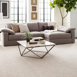 Comfortable carpet | Brooks Flooring Services Inc